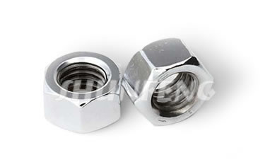 Two stainless steel heavy hex nuts in larger size and shiny surface.