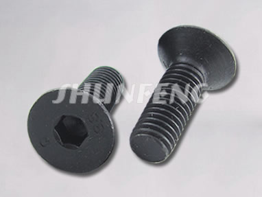 Two plain countersunk bolts with hex hole in their flat head.