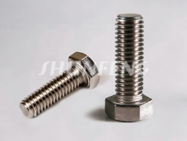 Two stainless steel tap bolts with the best resistance to rust and corrosion