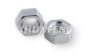Two clear zinc plated hex nuts in standard type.